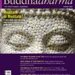 Buddhadharma: The Practitioner's Quarterly Invites Your Submissions
