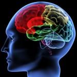 Neuroscience & Nirvana