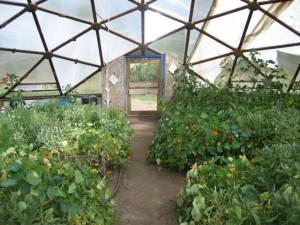 Shambhala Mountain Center domed garden