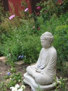 Buddha in the Shambhala Mountain Center garden