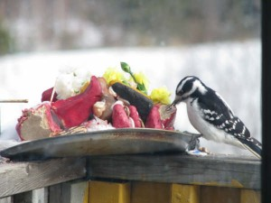 A local resident feasts on the offerings