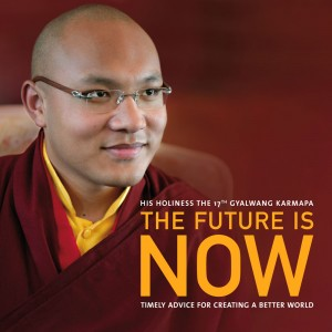James Gritz, Karmapa Foundation