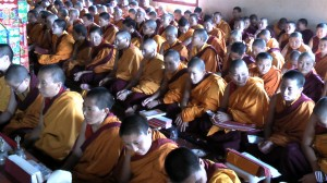 Nuns of Tsogyal Shedrup Ling participating in the Mipham Monlam