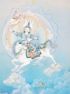 Shiwa Okar, for Sakyong Mipham. © Cynthia Moku.