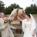 4 Windhorse Wedding