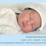 Welcome, Theo!