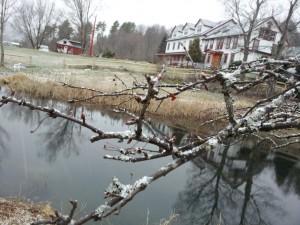 Karme Choling winter