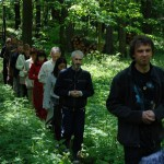 walking meditation through the forest