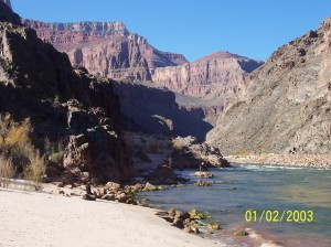 Laura McNulty practices on the bank of the Colorado River while a friend-in-the-making fishes in the background