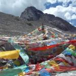Reborn in Tibet, 2