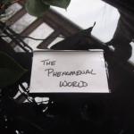 Phenomenal World Takes Bodhisattva Vow