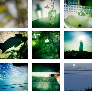 MacMillan 365 Photos of a Day