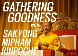 Gathering Goodness
