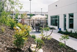 courtyard at Precision BioLogic