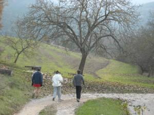Running in France