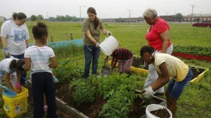 Unity Gardens Group