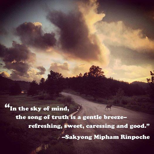SMR quote