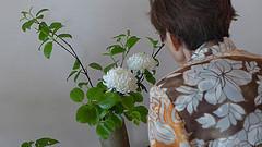 Watanabe Sensei with an arrangement