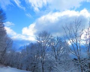 Irini Rockwell winter