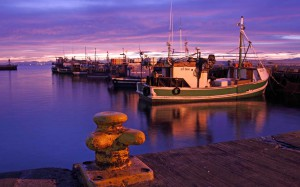 photo by Jennifer Woodhull - This harbor scene is just down the coast a little from where I live now in South Africa.