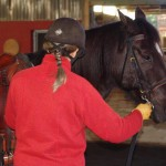 Horsemanship Dharma