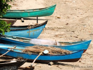 Canoes Goa
