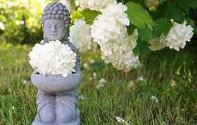 buddha-753016__180