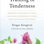 Book Review: Training in Tenderness
